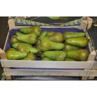 Vers Fruit - Peren - Conference - Gesorteerd (NL)