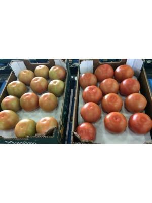 Standaard - Tomaten - Los (MA)